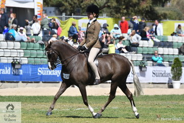 """Successful young rider, Kate Kyros from Adelaide rode her very well performed, 'Owendale Beesting' to win the class for Child's Show Hunter Pony 12.2hh and Under. They went on to take out the Child's Show Hunter Pony Reserve Championship. Beesting went on to claim the """"Pudd"""" McLean Memorial Trophy for the Most Successful Show Hunter Pony."""