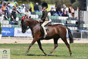 Amelia Baines rode her, 'Oak Park Serengeti' to second place in the class for Child's Show Hunter Pony N/E 12.2hh.
