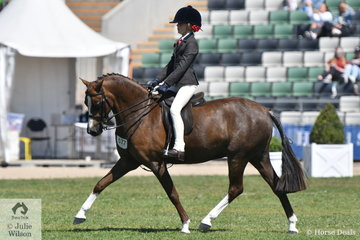 Tamara Lee and Jessica Sharp's nomination, the typey, Imperial Vagabond' took fourth place in the class for Child's Show Hunter N/E 12.2hh.