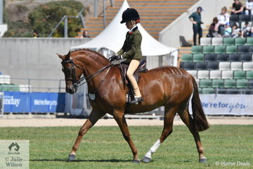 Olivia Carter rode Brooke Carter's, 'NSJ Town Crier' to take second place in the class for Open Show Hunter Pony 12.2-14hh.