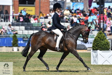 Abby Clark is pictured aboard her, 'Drumeden Chorus Line' during the judging of the Fairlight Acres Trophy, a competition for ponies showing outstanding Show Pony qualities.