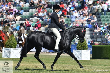 Lynda Hayes rode her own and Vicki Pisciotta's beautiful, 'Wideacre Black Diamond' by Royalwood Boy Soprano to win the class for Novice Pony 13-13.2hh.