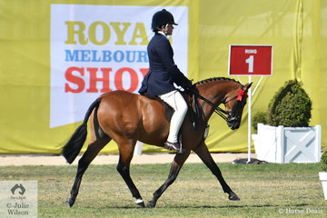 Marcia Beard from the Western District of Victoria has had many successful visits to Melbourne Royal and this year was no exception. She is pictured aboard her Gelding N/E 12.2hh winner, 'Rhyl Monarque' (Turberry Tom Kitten/Rhyl Matinee) that went on to be declared 2018 Royal Melbourne Show Small Pony Champion.
