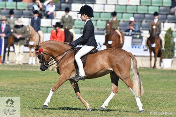 Sabrina Gilmour rode her, ''Woranora Nefertiti' to win the class for Open Pony 11.2hh and Under.