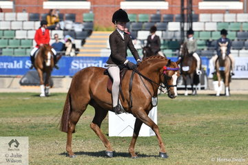 Poppi Plumb rode the well performed, 'DP Gigolo' to second place in the class for Pony Gelding N/E 12.2hh and when given the chance to work for Small Pony Reserve Champion, she grabbed the opportunity and secured the title.