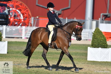 Shayleigh Joblin rode Kim Joblin's, 'Maxwell Matador Royale' to take sixth place in the class for Open Pony 13.2-14hh.