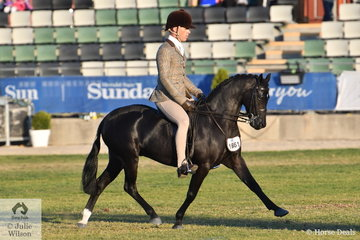 Adam Oliver rode Christy Pollock's well named, 'Langtree Just Devine' to win the class for Open Show Hunter Pony N/E 12hh and went on to be declared Reserve Champion Small Show Hunter Pony.
