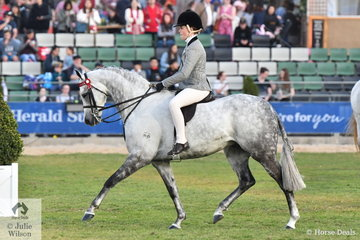 """If ever there was a pony displaying """"show pony qualities"""" it is 'Mirinda Alabaster' (Mirinda Field of Dreams/Rotherwood Matinge GB). Daizi Plumb rode the beautiful pony to claim the 2018 Royal Melbourne Show Fairlight Acres Trophy. They went on to win the class for Open Pony 13.2-14hh and claim Alabaster's first Royal Show Champion Large Pony title."""