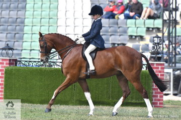 Mia Heinrich rode her 'Regalbrook Razzle Dazzle' to take third place in the class for Pony Turnout 12.2-14hh