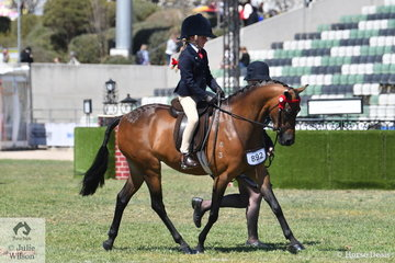 With Lisa Smith on the run, Willow James rode the L & L Smith nomination, 'Braeside Miss Divine' to win the class for Leading Rein Pony 12hh and Under.