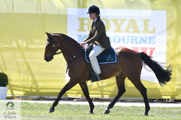 Angus Richardson had success today in the Australian Stock Horse ring with his, 'Boonara Jackson' (Bluff Downs Jake/Star Mannequine) including winning the class for Working Australian Stock Horse Rider 17 Years and Under.
