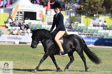 Tahlia Young rode her mother Brooke Young's, 'Tara Park Georgia' to win the class for Novice Ridden Shetland.