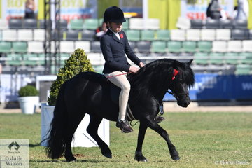 Judy Ivory's 'Del Lee Gareth' took second place in the class for Novice Ridden Shetland.