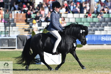 Ella O'Doherty rode Jane and Rebecca Gerber's, 'Royalview  Midnight' to take third place in the class for Ridden Shetland 10-10.2hh.