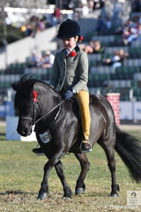 Molly Manchester rode Elizabeth Daly's, 'Lentara Ozzie' to win the class for Child's Ridden Shetland.