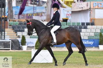 Taylah Hutchinson from NSW rode her, 'Burnbrae Park Talisman' to take second place in the class for Child's Galloway 14-14.2hh. Later in the day,  the typey Galloway won the strong class for Open Galloway 14-14.2hh.