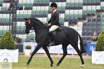 Matt Snell rode his , 'Headley Park Black Label' to win the class for Gent's Galloway.