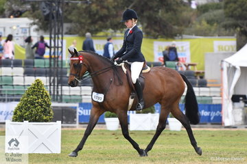 Kelsea Bullivant's, 'Warrawee Double Edition' took third place in the class for Open Galloway 14.2-15hh.