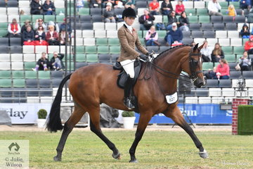Ava Halloran has made an impressive step up from ponies to big horses, and we mean very big. She rode her Shiraz Black gelding, 'Equest Liberate' to  take fifth place in the class for Open Show Hunter Over 16.2hh. Ava went on to claim the Child's Show Hunter Reserve Championship.