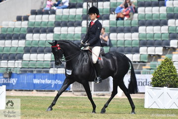 Shelley Howard rode the Burns, Banks and Gore-Johnson nomination, 'Wideacre Prince George' to take fifth place in the class for Galloway Gelding 14-14.2hh.