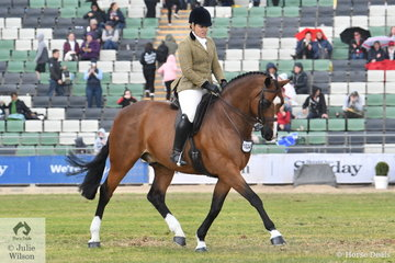 Andrea Merry rode her super Quaterback gelding, 'Quantador' to take third place in the class for Show Hunter Gelding 15-16hh.