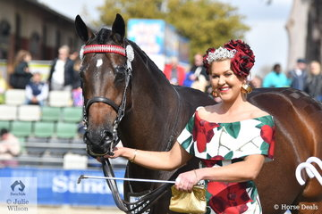 Stephanie Barrington never misses an opportunity to dress up and she certainly looked ready for the Spring Carnival today. She is pictured with her, 'Dior' by Zabeel during the judging of the Racing Victoria OTT Fashions at the Show competition.