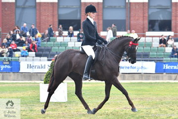 Sarah Ryan won the class for Galloway Gelding 14.2-15hh with her beautiful and successful, 'Holly's Galaxy' and on the strength of their performance at the show, they took out the Grand Parade Trophy for Most Successful Galloway.