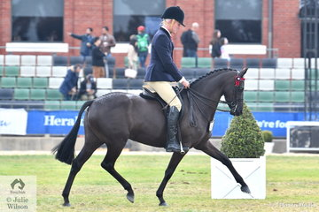 Michael Christie rode Joh Bailey's, 'Silkwood Bluebird' to claim the Best Novice Galloway award and they went on to win the class for Galloway Mare 14-15hh and take second place in the Open 14-14.2hh.