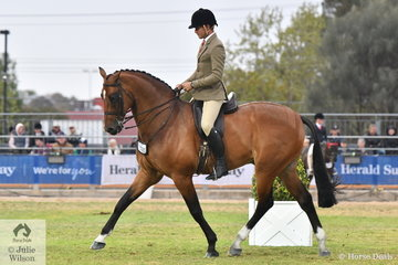 Jess Stones rode Matilda Longbottom's impressive, 'Powerplay' to third place in the class for Open Show Hunter Over 16.2hh. Later in the day Rhys Stones (pictured) stepped aboard Powerplay to win the Gents Hunter.