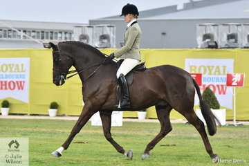 Back from her travels, Brynie Lee rode her 'SLM Valentino' by Walton to win the class for Lady's Show Hunter.