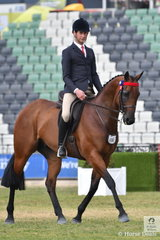 Josh Clarke rode Francesca Christie's, 'Manwell' to second place in the class for Novice Hack 15.2-16hh.