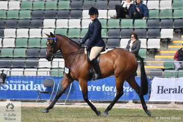 Lisa Apps rode her own and the Star Equestrian nomination, 'STR Movie Star' to win the class for Novice Hack 15-15.2hh.