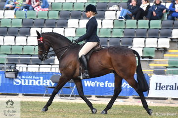Stephanie Barrington rode the Barrington and McCormack nomination, 'Dior' by Zabeel to win both the Novice and Open 16-16.2hh hack classes.