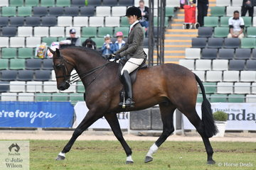 Rebecca Crane rode her impressive Falsterbo gelding, 'Federer' to claim the Providence Cup Runner Up award.