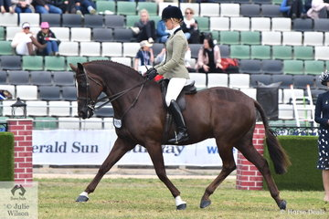Not long back from her third trip riding in the UK, Brynie Lee has stamped her claim on the Providence Cup with her super working Walton gelding, 'SLM Valentino'. This combination won the Cup in 2016 and were Runners Up last year and claimed the award again today. The Providence Cup is probably the toughest showing competition at the Royal Melbourne with so many outstanding Show Hunters all vying for the coverted award.
