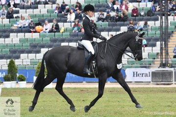 Jess Stones rode the very well performed, 'Taittinger' to win the class for Open Hack Over 16.2hh and claim the 2018 Royal Melbourne Show Hack Championship, the second Championship for this combination. They also took out the Pope Cup Runner Up Award. Taittinger is a former winner of this special class for Horses Showing Thoroughbred Qualities.
