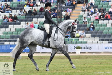 Sixteen year old Kaitlin Labahn has formed a very good partnership with her mother, Michelle Labahn's beautiful, 'Rolex II'. In a strong field they outperformed some experienced opposition to claim the 2018 Royal Melbourne Show Pope Cup. And that's not all. They claimed the Child's Hack Championship and as second to the Champion, they made the most of their opportunity and claimed the 2018 Royal Melbourne Show Reserve Hack title. After all that they claimed the Gorst Family Award for Best Performed Hack of the show.