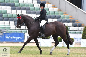 Syenna Vasilopoulos made Pope Cup Top Ten with her former Sydney Royal Champion Hack, 'High Fashion'.