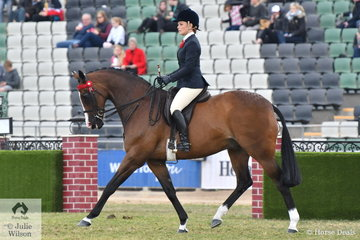 Courtney Bird rode her lovely, 'Marquise' to win the class for Open Hack 15.2-16hh.
