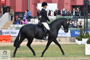 Ty Zoontjens from South Australia rode Tonia Scaife's beautiful Warmblood, 'DS Tulara Fursandro' by Furstenball out of a Sandro Hit mare to win the class for Gent's Hack and take third place in the class for Open Hack 15-15.2hh.