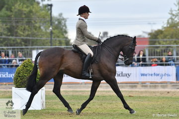Adam Oliver rode Emma Ashton's, 'Cruze' to win the class for Show Hunter Galloway Gelding 14.2-15hh.