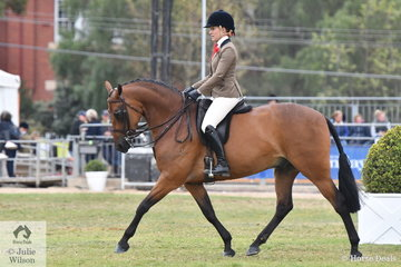 Chanele Hunter -Cooke rode Trudi Jones', 'Royal Command of Sefton' to win the class for  Show Hunter Galloway Gelding 14-14.2hh.