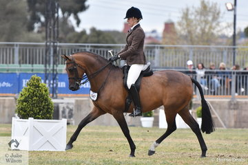 Adelaide Jacobs', 'Beauparc Dreams' won the class for Show Hunter Galloway Mare.