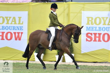 Izabella McIntyre rode Amanda McIntyre's well performed , 'Meteor Showers' to take second place in the class for Open Show Hunter Galloway 14-14.2hh.