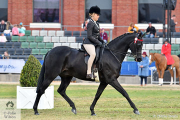 Phoebe Kouros rode India Mitchell's, 'Royalwood Centre Stage' by Royalwood Boy Soprano to win the class for Hack Gelding 15-16hh.