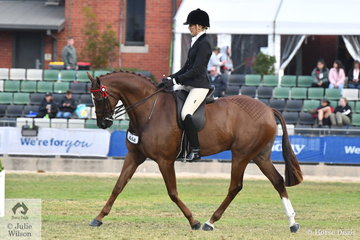 Ali Berwick rode her own and Emma Barkla's 2018 Adelaide Royal Reserve Champion Hack, 'Royal Oak Foreign Affairs' by Royalwood Boy Soprano to win the class for Open Hack 15-15.2hh.