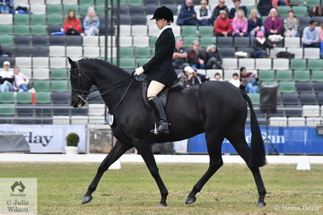 Architect, India Mitchell was first out in the 84th Garryowen Equestrienne Turnout class today riding her, 'Royalwood Centre Stage'.