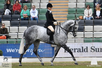 Ali Berwick teamed up beautifully with Michelle Labahn's Reserve Champion Hack and Pope Cup winner, 'Rolex II'. The 2012 winner took second place this year.