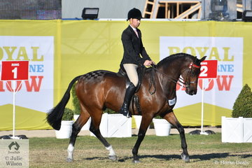 Matthew Hall took third place in the class for Gentleman Rider 30 Years and Over.