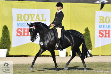 Ty Zoontjens won the class for Gentleman Rider 18-30 Years and went on to be declared Reserve Champion Gentleman Rider.